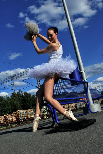 Suvi Leskinen: 'Odette ja Odile'