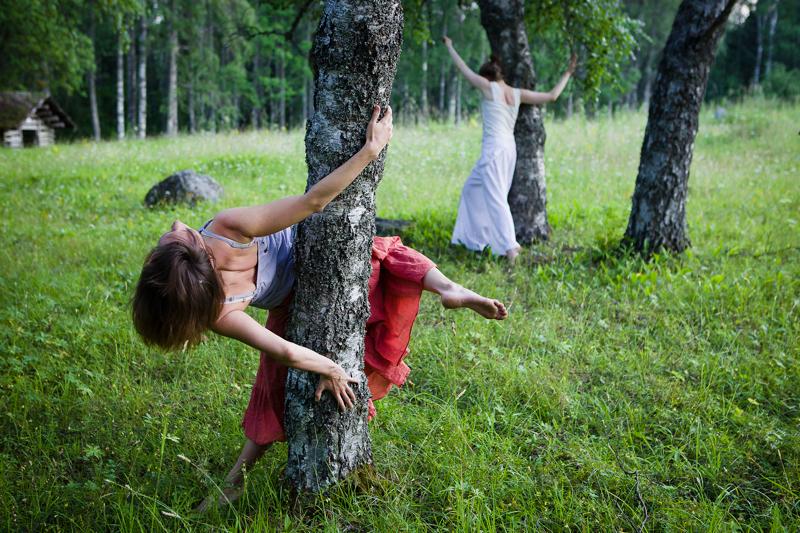 Petri Löppönen: 'Tanssi niityllä'