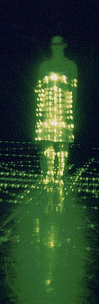 Petra Hauerová: Night Moth (kuva: Jiri Malek)